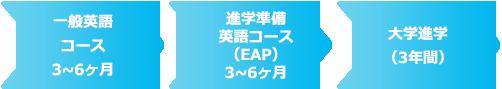 一般英語コース3~6ヶ月⇒進学準備英語コース(EAP)3~6ヶ月⇒大学進学(3年間)